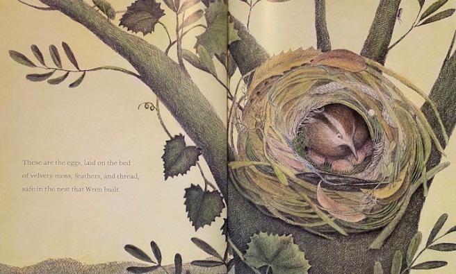 The-Nest-that-Wren-Built-SPREAD